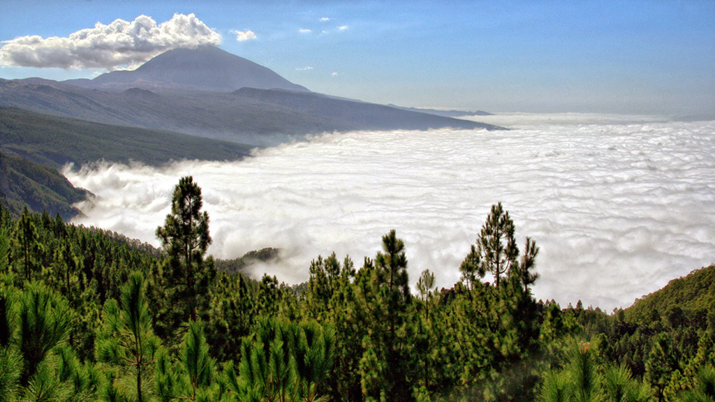 Teide Vulcano above the clouds in Tenerife