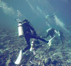 open-water-diver